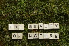 La belleza de la naturaleza escrita con las letras de madera cubicó forma en la hierba verde foto de archivo libre de regalías