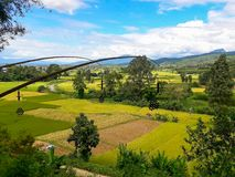 La belleza del distrito del arroz PUA Fotos de archivo libres de regalías