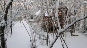 La belleza del invierno Imagen de archivo libre de regalías