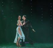 La belleza está en la danza del mundo del pecho-flamenco de la Austria de la danza- Fotos de archivo libres de regalías