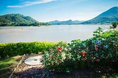 La bellezza dei fiumi, delle montagne e dei fiori Immagini Stock Libere da Diritti