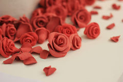 La bellezza del fiore Fotografia Stock Libera da Diritti