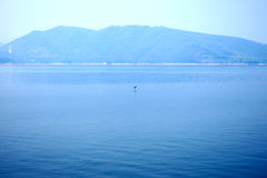 La bellezza del lago Fotografia Stock Libera da Diritti