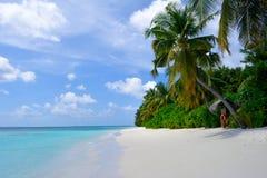 La bellezza delle Maldive Fotografia Stock Libera da Diritti