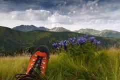 La bellezza delle montagne Fotografia Stock Libera da Diritti