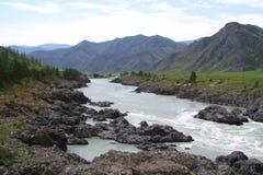 La bellezza delle montagne di Altai di estate in buon tempo fotografie stock libere da diritti