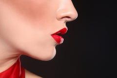 La bellezza di modo compone con le labbra ed i chiodi di corrispondenza Immagini Stock Libere da Diritti