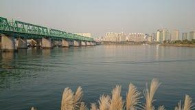La bellezza di Seoul 3 Fotografie Stock Libere da Diritti