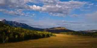 La bellezza paesaggistica del Colorado Rocky Mountains Fotografia Stock
