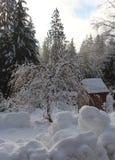 La bellezza semplice di un giorno di inverno fotografia stock