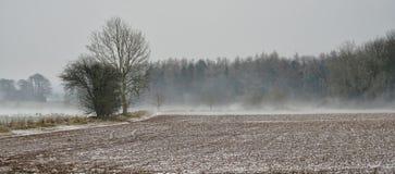 La bestia para la nevada del este golpea el Cotswolds fotografía de archivo