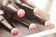La bière de la meilleure qualité de Hasseröder pils d'Allemand se situe dans un réfrigérateur photos stock