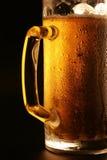 La bière froide Photo libre de droits