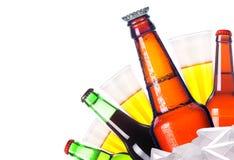 La bière givrée d'isolement a placé avec la bouteille de rois de bière Images libres de droits
