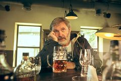La bière potable de mâle barbu supérieur triste dans le bar photos libres de droits
