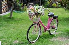 La bici adorabile immagine stock