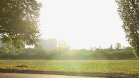 La bici del montar a caballo de la muchacha ayuna en el parque, disfrutando de resto activo el vacaciones de verano almacen de video