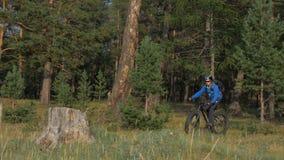 La bici grassa inoltre ha chiamato la bici della grasso-gomma o del fatbike nella guida dell'estate nella foresta video d archivio
