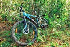 La bici miente en el bosque Imagen de archivo libre de regalías