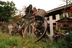 La bici vieja Fotos de archivo libres de regalías