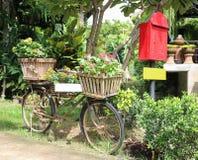 La bicicleta vieja adorna por la flor hermosa en jardín Fotos de archivo