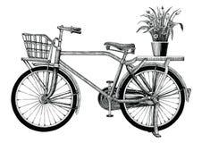 La bicicleta y la maceta del vintage dan el clip art del dibujo aisladas encendido libre illustration