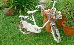 Bicicletta bianca con il mazzo del fiore in un giardino Fotografia Stock