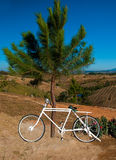 La bicicletta bianca sulla montagna Immagine Stock