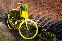 La bicicletta gialla vibrante con il canestro del narciso fiorisce sul fondo rustico del muro di mattoni Immagine Stock Libera da Diritti