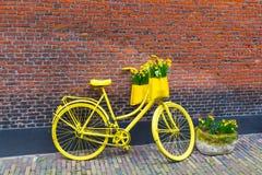 La bicicletta gialla vibrante con il canestro del narciso fiorisce sul fondo rustico del muro di mattoni Fotografia Stock Libera da Diritti