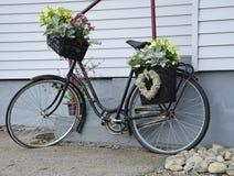 La bicyclette aiment un bac de fleur Images libres de droits
