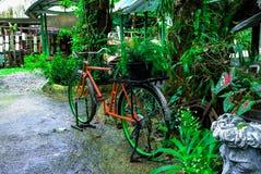 La bicyclette de stationnement photographie stock libre de droits