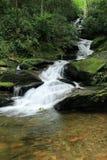 La bifurcación del rugido cae bosque del Estado de Pisgah Imagen de archivo libre de regalías