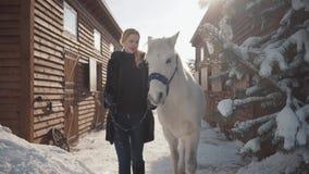 La bionda graziosa cammina con un bello cavallo bianco che conduce la sua tenuta una staffa sopra un ranch innevato del paese stock footage