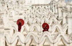 La Birmania, il monaco del principiante fotografia stock libera da diritti
