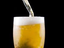 La birra è versata Immagine Stock