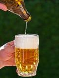 La birra da un vetro di birra della bottiglia da birra è versata Fotografia Stock