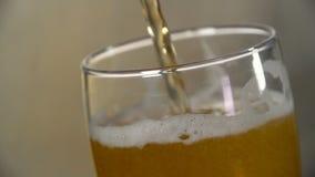 La birra leggera è versata in un vetro su un fondo grigio archivi video