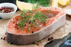 La bistecca di color salmone, il limone e le spezie freschi hanno preparato per cucinare Immagini Stock Libere da Diritti