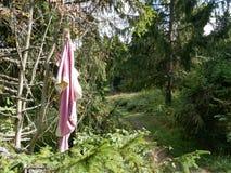 La blusa rosada vieja colgó en un árbol en el bosque en el rastro Fotos de archivo
