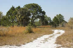 La bobina della traccia di escursione attraverso Florida sfrega alla pari di Kissimmee del lago Immagine Stock Libera da Diritti