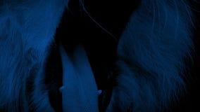 La boca del león ruge en la noche metrajes
