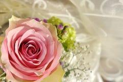 La boda rosada se levantó en la floración imagen de archivo libre de regalías