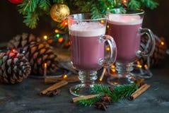 La boisson chaude d'alcool de bonbon à hiver de Noël a chauffé le vin rouge Images libres de droits