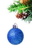 La bola azul brillante de la Navidad en abeto ramifica con el aislador de las decoraciones Imagen de archivo