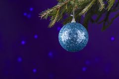 La bola de plata azul de la Navidad o de Navidad adorna la ejecución en la rama de árbol de la Navidad o de pino en tema congelad Fotos de archivo