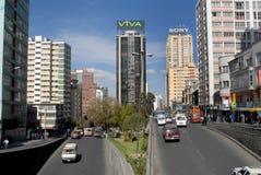 La Bolivia Fotografie Stock Libere da Diritti