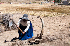 La Bolivia - Isla del Sol sul lago Titicaca Fotografie Stock