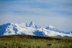 La Bolivia le Ande Immagini Stock