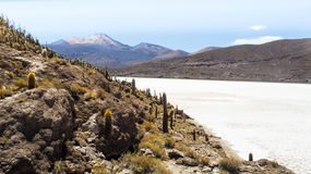La Bolivia/Salar de Uyuni Fotografia Stock Libera da Diritti